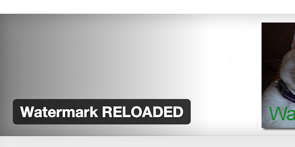watermark-reloaded
